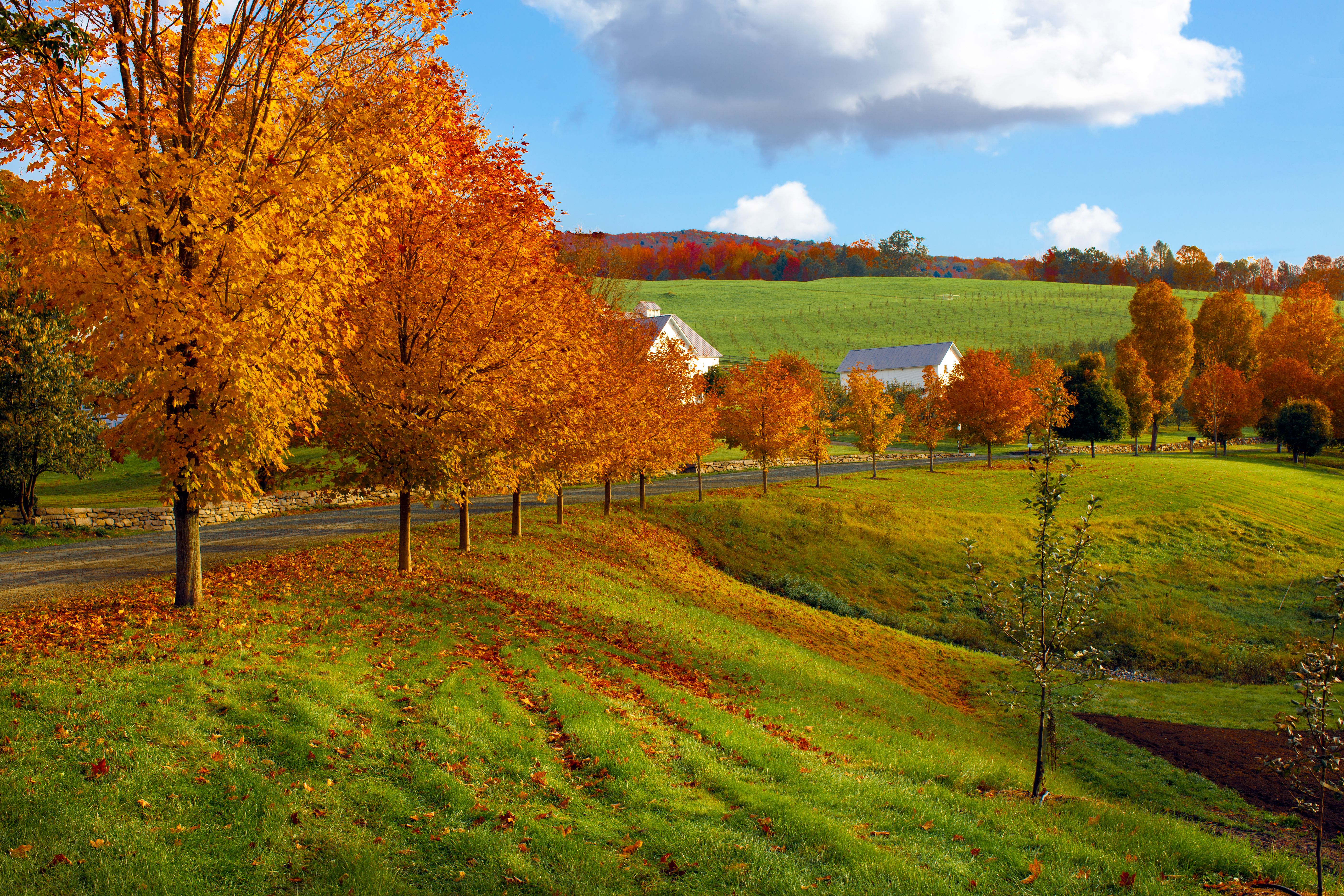 Northern Vermont Countryside