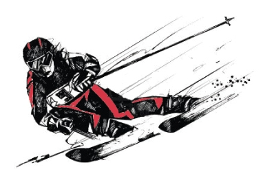 wellesley high school alpine skiing logo 2013