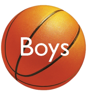wellesley high school Boys Basketball logo 2013