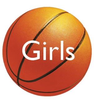 wellesley high school Girls Basketball logo 2013