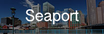Seaport Real Estate Button