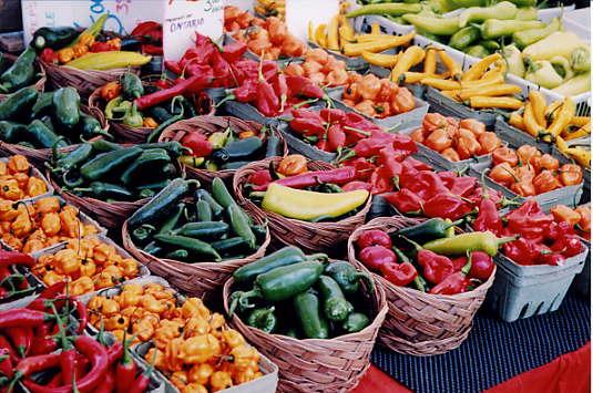 Salisbury CT farmers market
