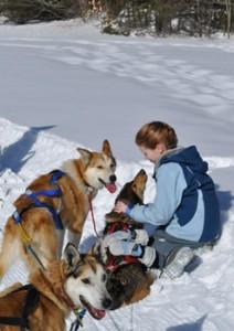 girl_dogs_winter_web