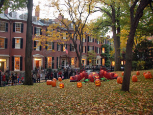 beacon-hill-halloween
