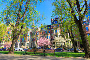 Back Bay Homes and Condos for sale and rent