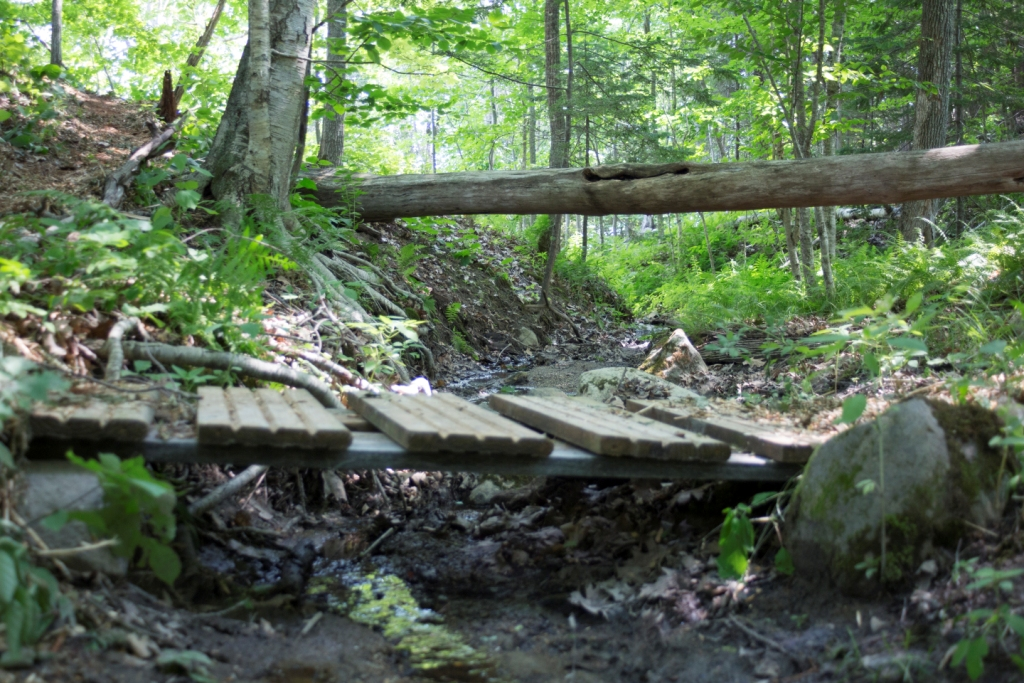 238 Flying Point Rd - Freeport MLS # 1275148. Woods access to conservation land