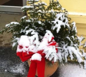 shelburne snow