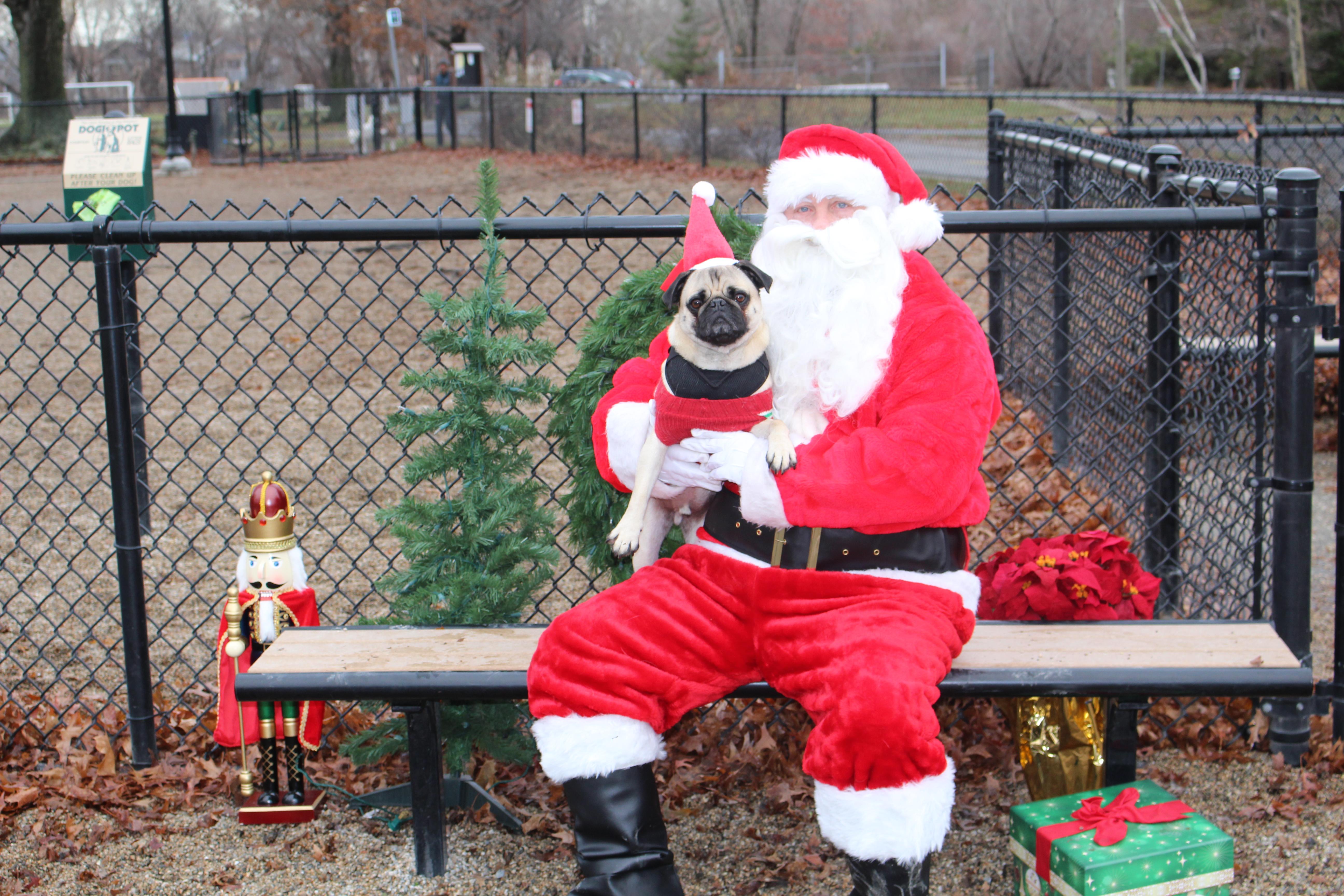Santa Paws at Thorndike Field Dog Park
