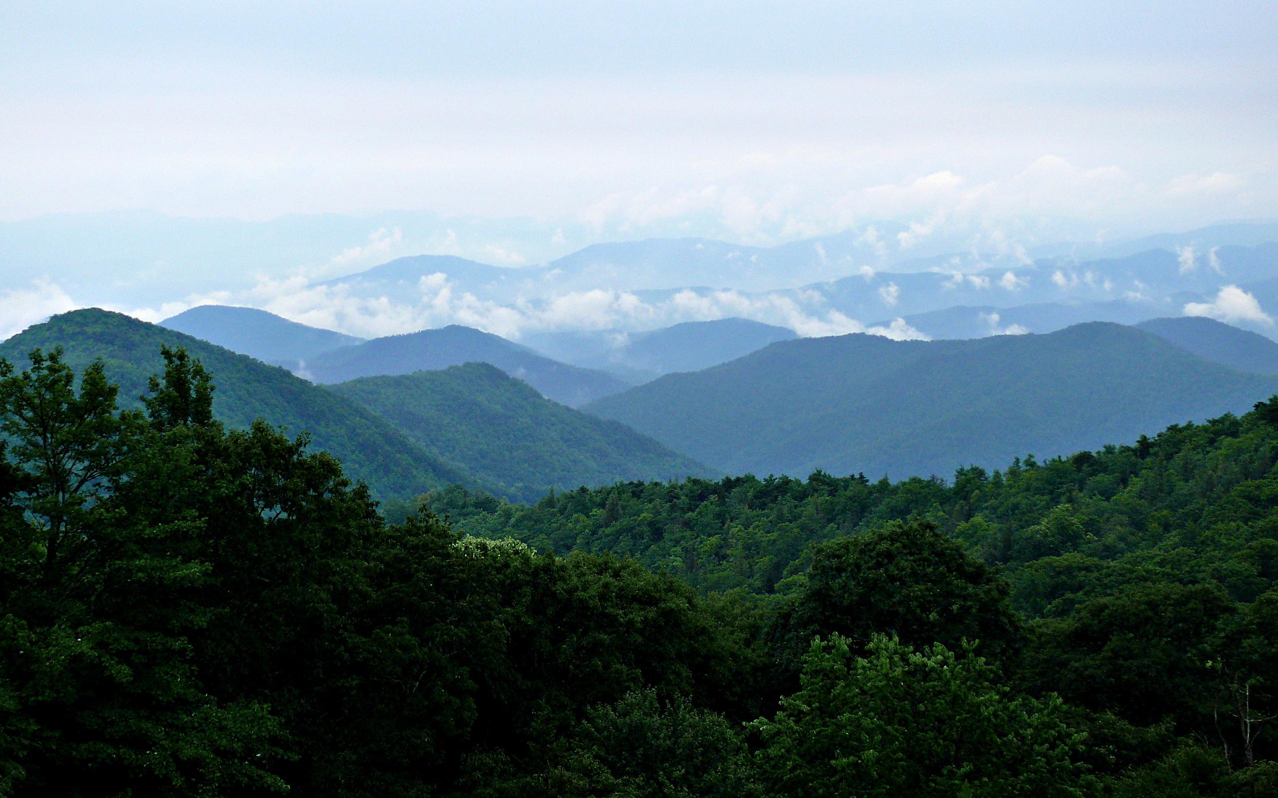 Asheville Area Hikes
