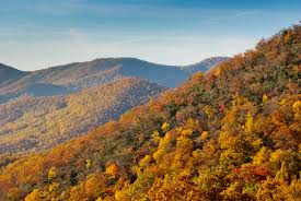 Capture fall foliage photos from the Blue Ridge Parkway