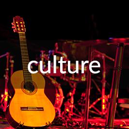 Ashevile Culture Link