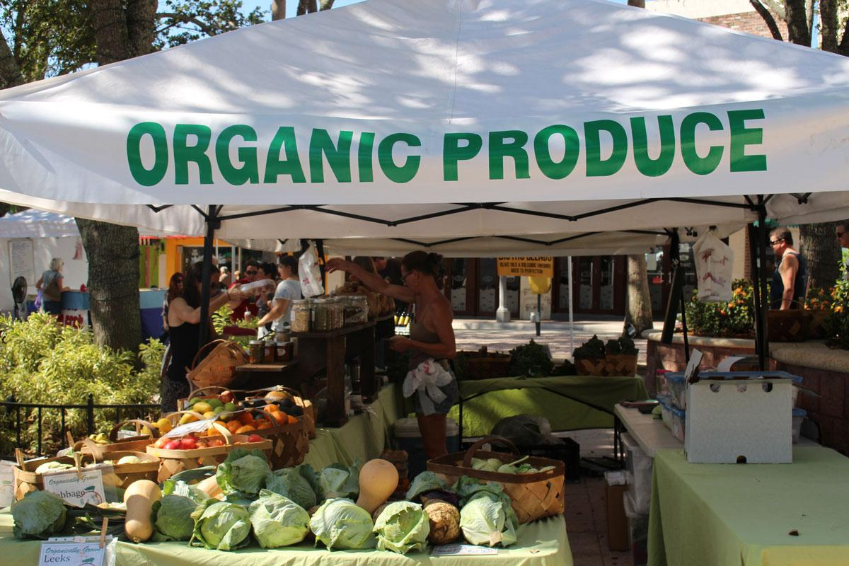 Organic Produce from Palm Beach to Jupiter Island