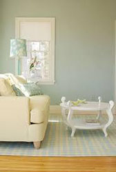 Interior Paint Mist Color 2019