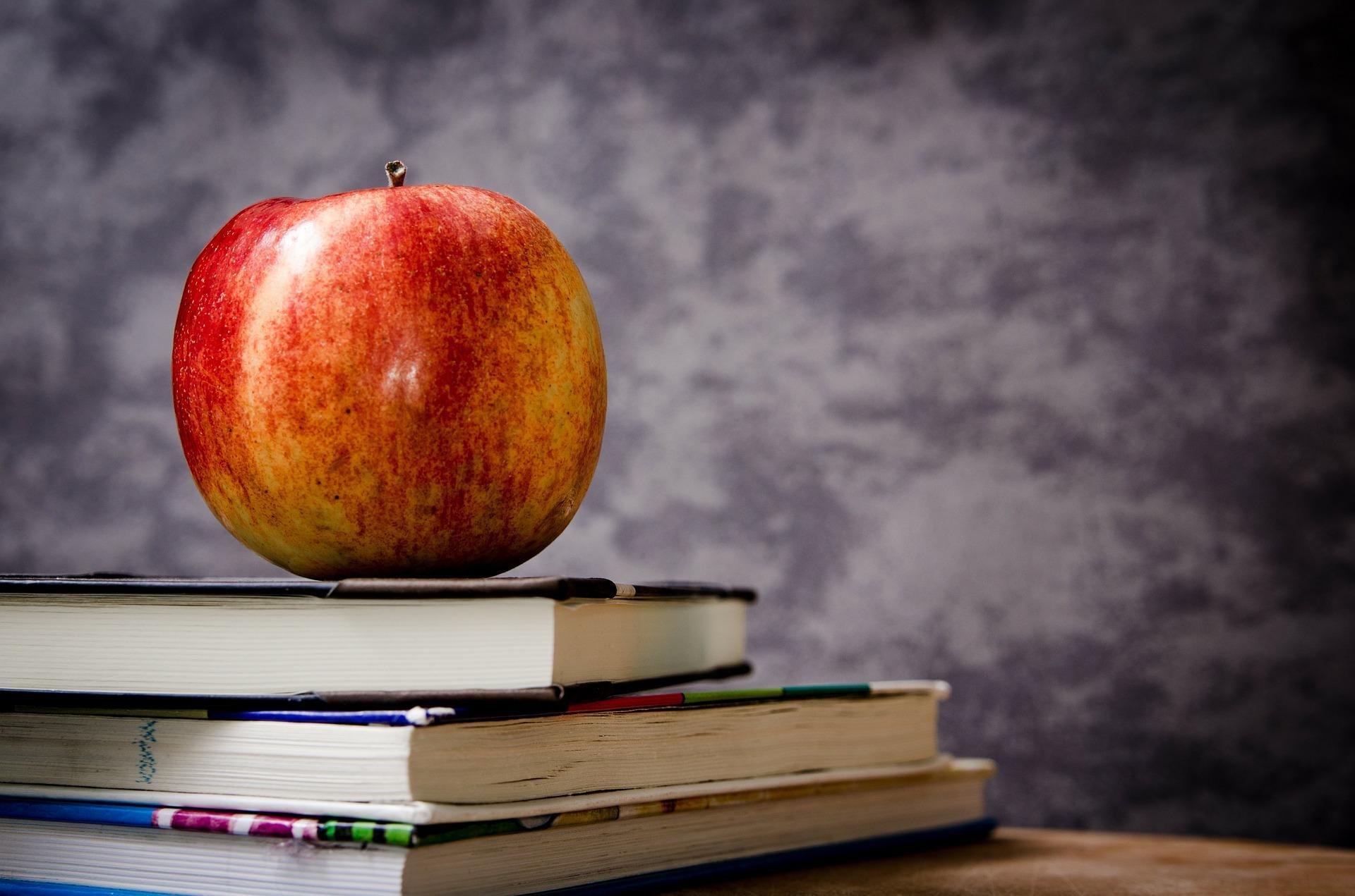Palm Beach County Private Schools