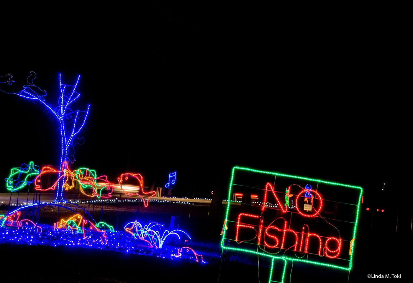 Photo: Bull Run Festival of Lights, photo by Linda M. Toki