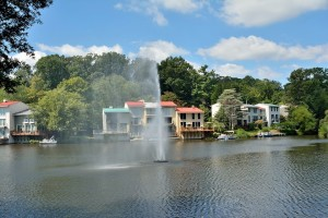 Waterview Cluster in Reston, VA
