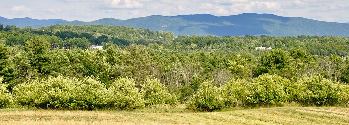 Addison County Vermont_pastoral landscape