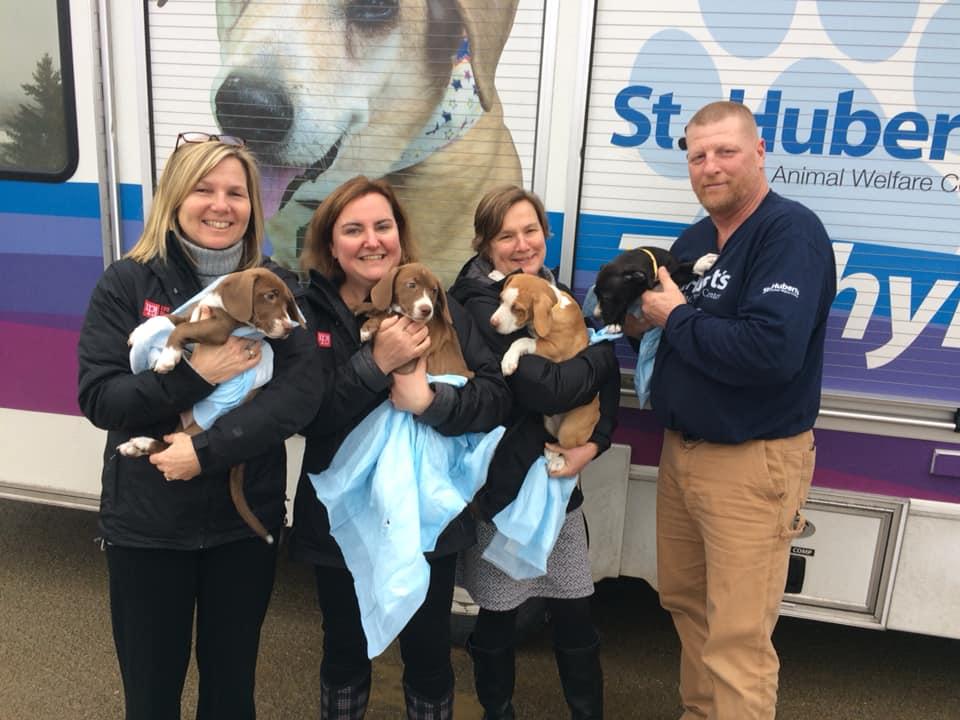 Sarah Peluso, Beth Stanway and Karen James help to greet the incoming animals needing adoption!