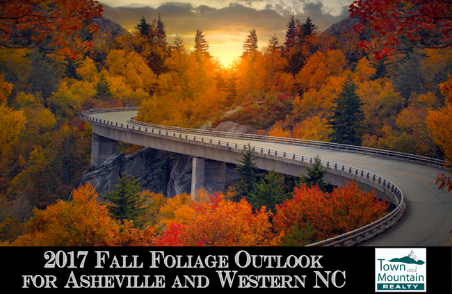 asheville and western nc fall foliage outlook for 2017