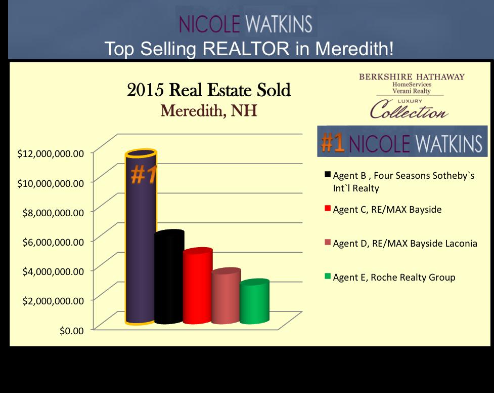 Nicole Watkins top selling realtor in Meredith NH 2015 chart