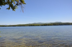 Stunning! Winnipesaukee parcel has level lakeside lawn and perched beach.