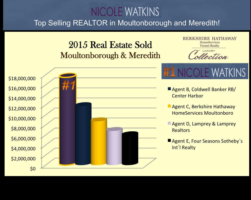 Nicole Watkins Top Selling Realtor in Meredith and Moultonborough NH 2015 Chart