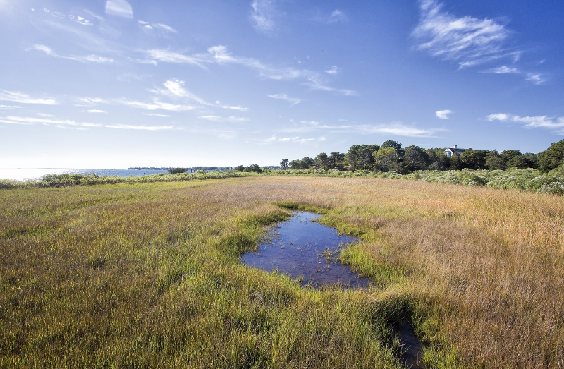 Land for Sale in Edgartown's Katama