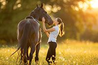 VT Horse Property for Sale