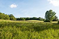 VT Land for Sale