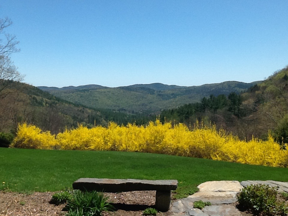 landscaping yards spring new england