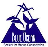 Blue Ocean Society
