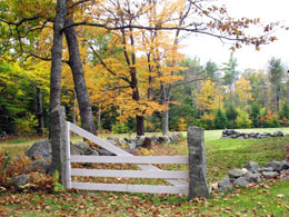 Gate way and stone walls in southern New Hampshire