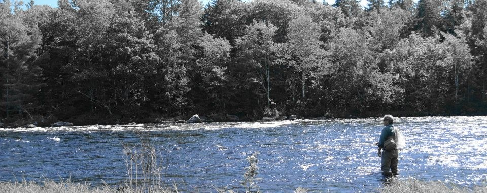Fly Fishing West Branch Maine