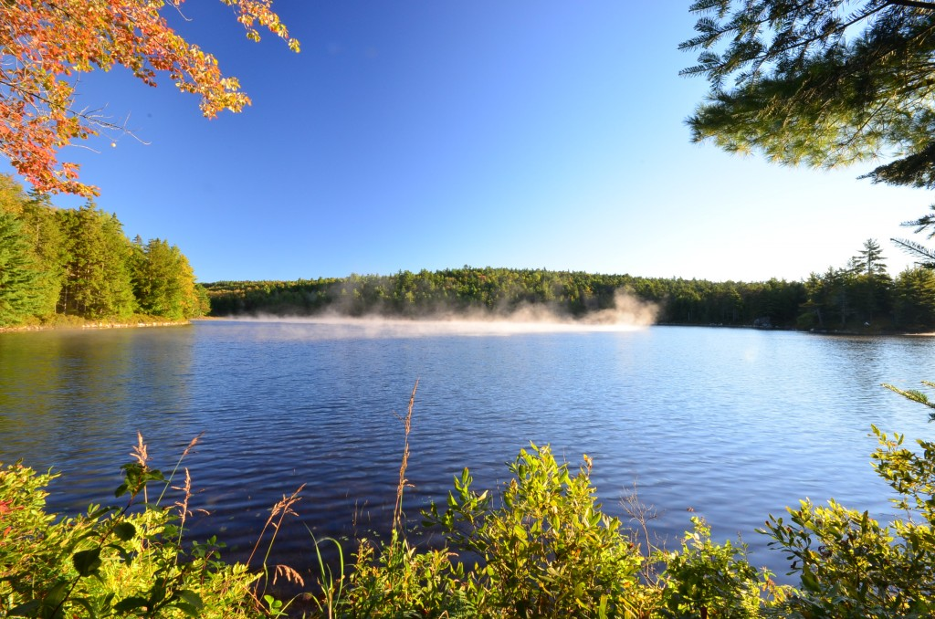 Ocean lake river or stream maine waterfront property for Trout fishing ponds near me