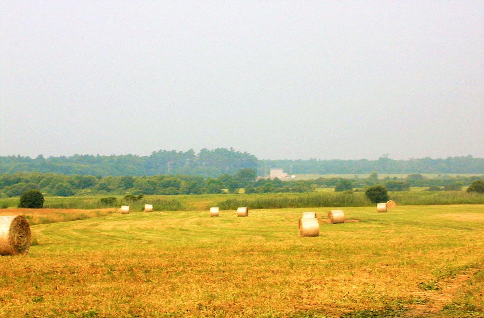 Farm in Plympton MA