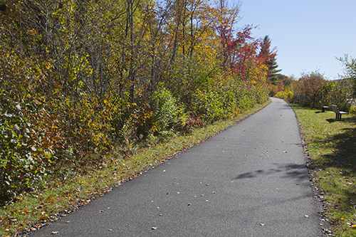 bike path williamstown