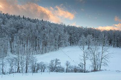 Marlboro Snowy Countryside