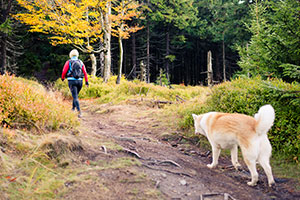 Hiker and dog in the fall