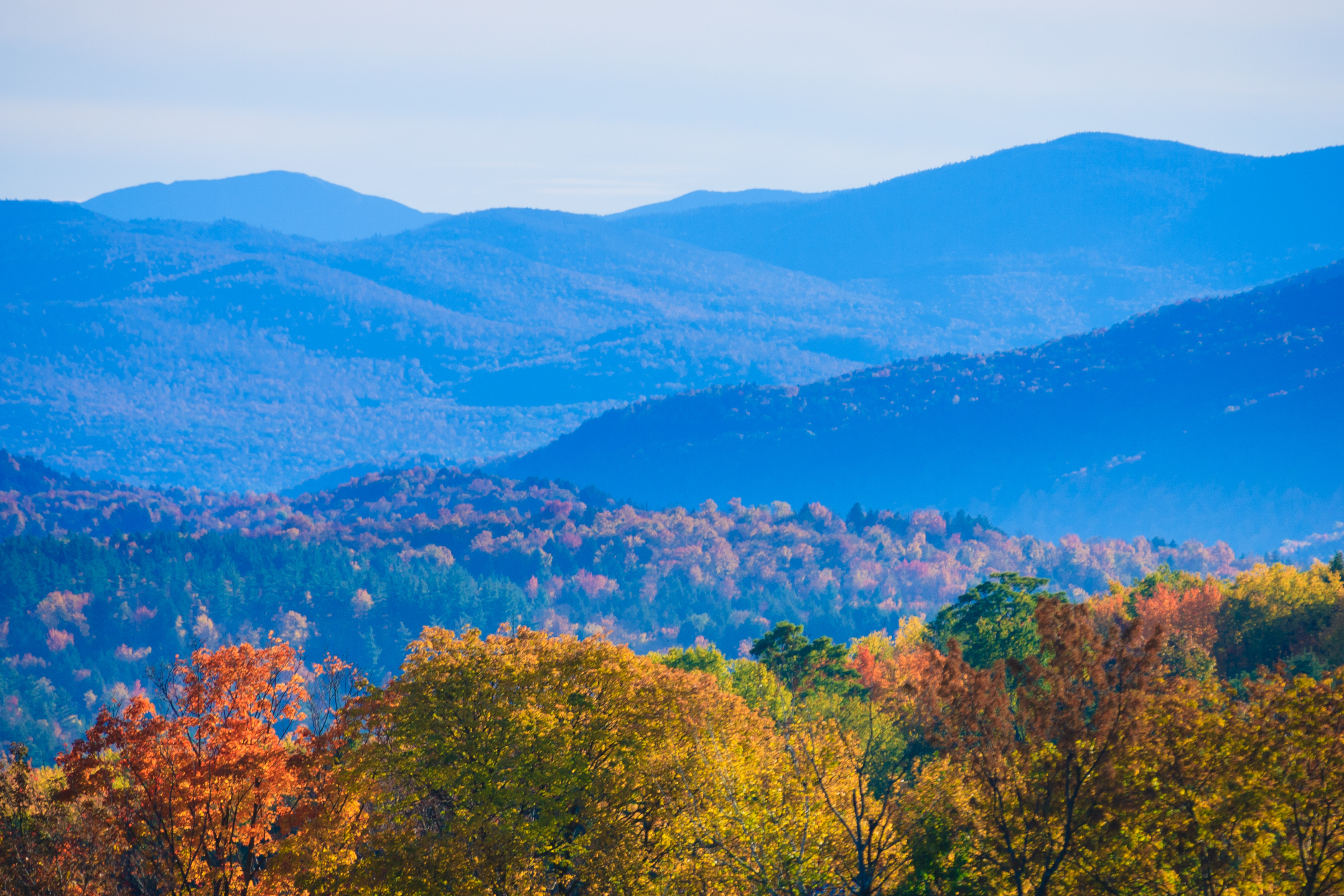 Fall in Montpelier VT