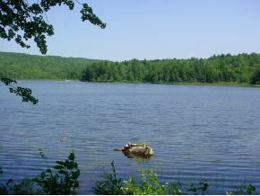 View of Crystal Lake Real Estate. Lakefront Crystal Lake Property