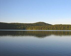 Manning Lake Real Estate for sale - homes and cottages - view of the lake