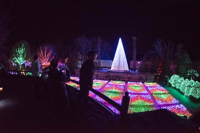 Arboretum Winter Lights