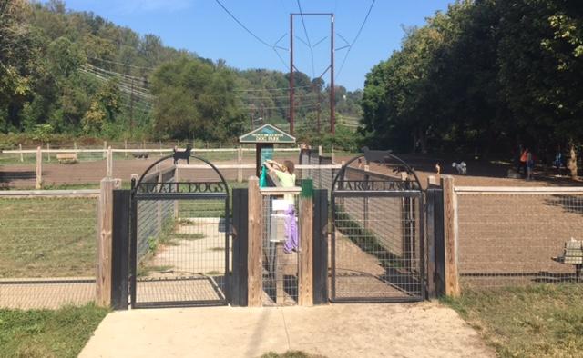 John S Natural Dog Training Company