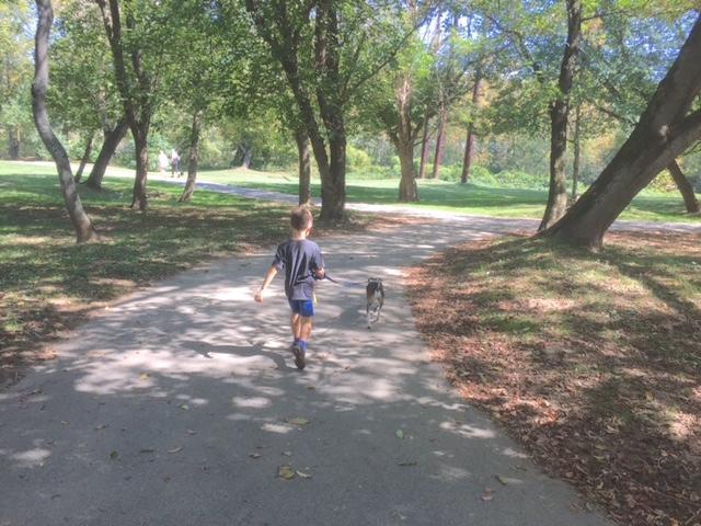 Asheville Dog Park