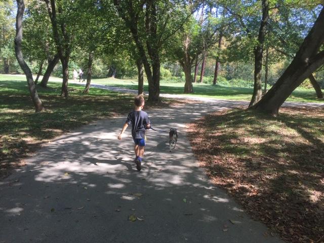 Asheville Parks