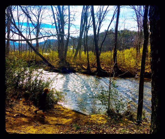 Swannanoa River Valley Asheville