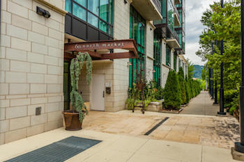 Downtown Asheville Condos for Sale