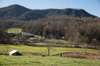 Fairview NC Farmland