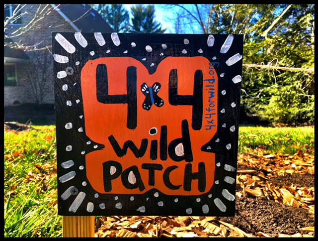 4 x 4 Wild Patch Asheville non-profits