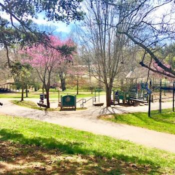 Malvern Hills Park West Asheville